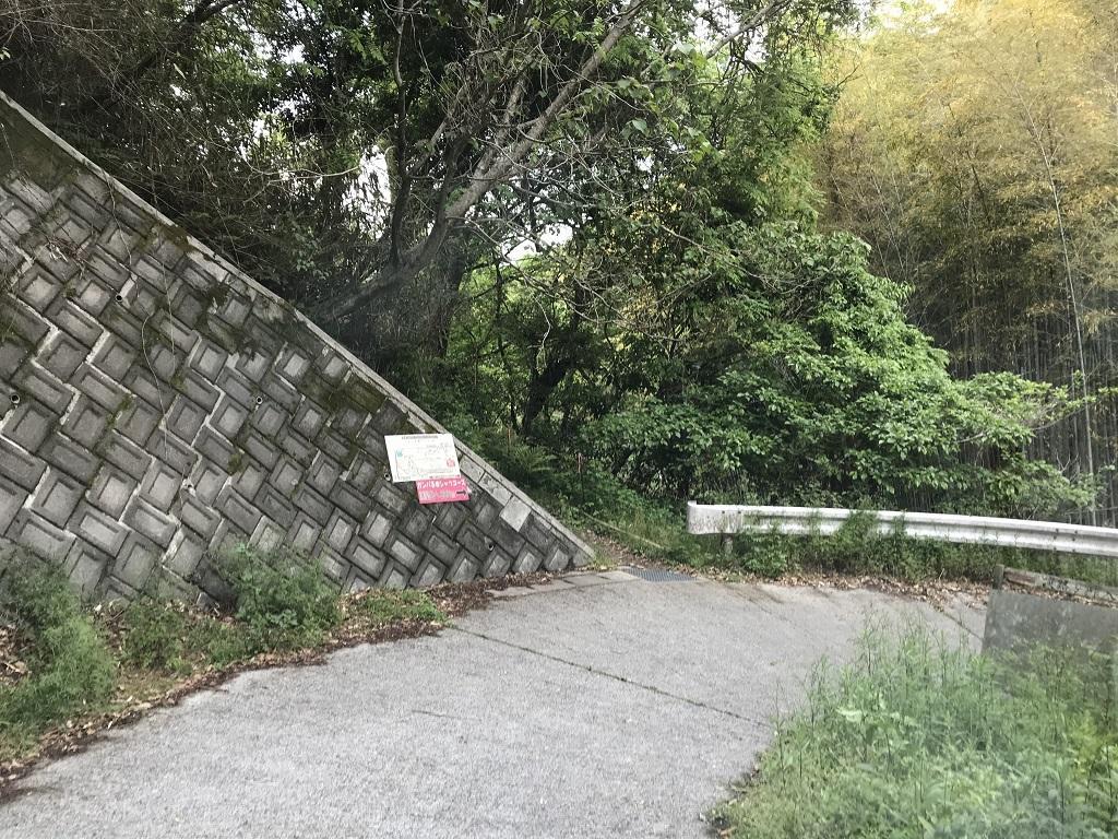 淡路ヶ峠 砂防ダム奥ルートからの帰り道(ガンバる赤シャツコースの登り口前)