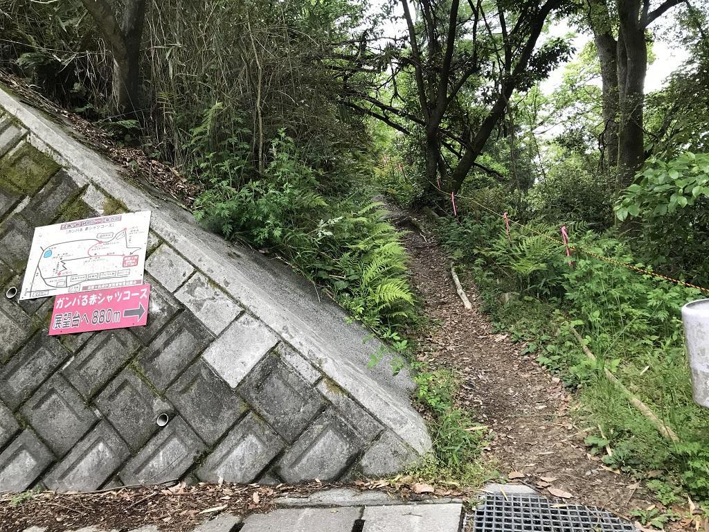 淡路ヶ峠 砂防ダム奥ルート ガンバる赤シャツコースの登り口